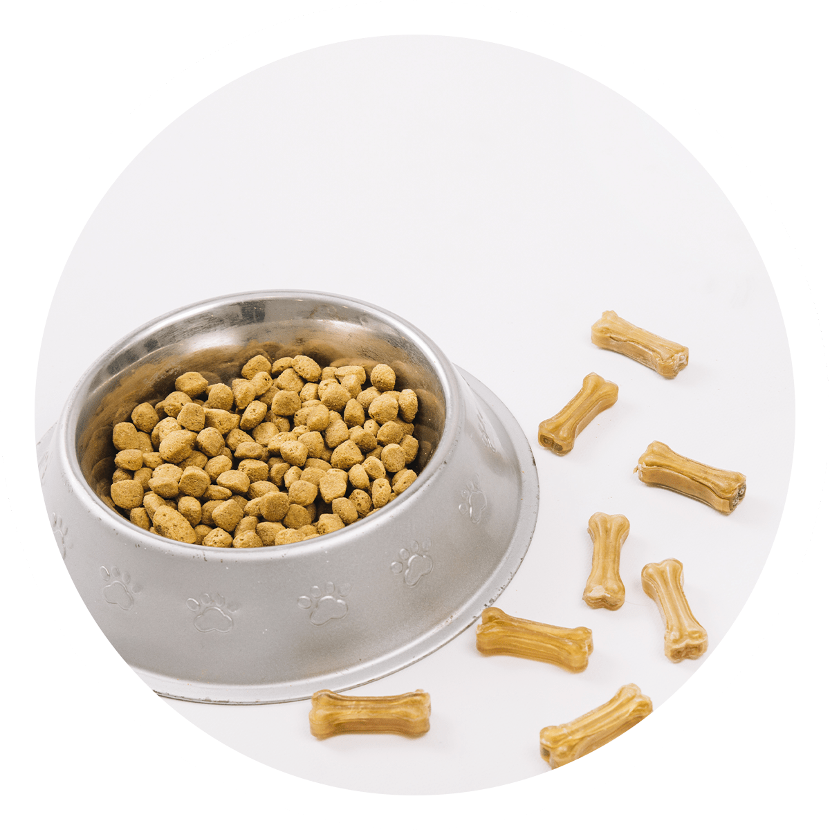 Apawtiser • Handmade, Hypoallergenic Dog Treats • Worksop